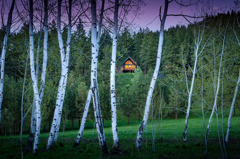 Cabin Stuart's Roost