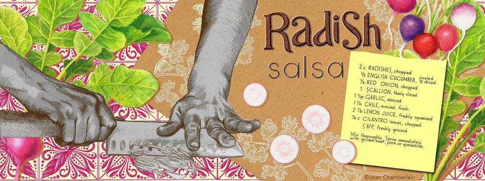 Illustrated Recipe - Radish Salsa