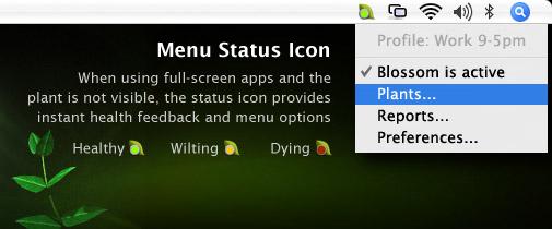 Blossom menu.jpg