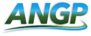 ANGPlogo.png