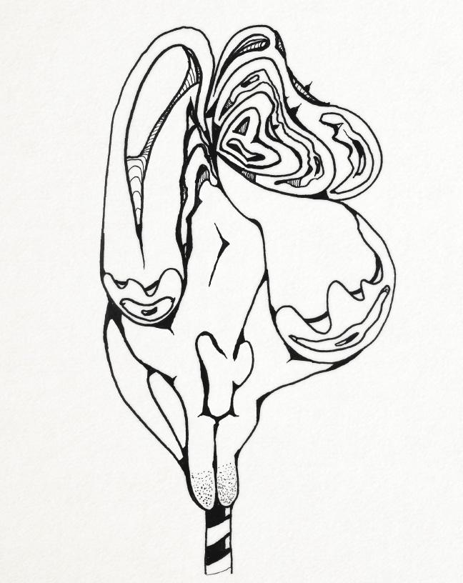 Sketch-27.jpg