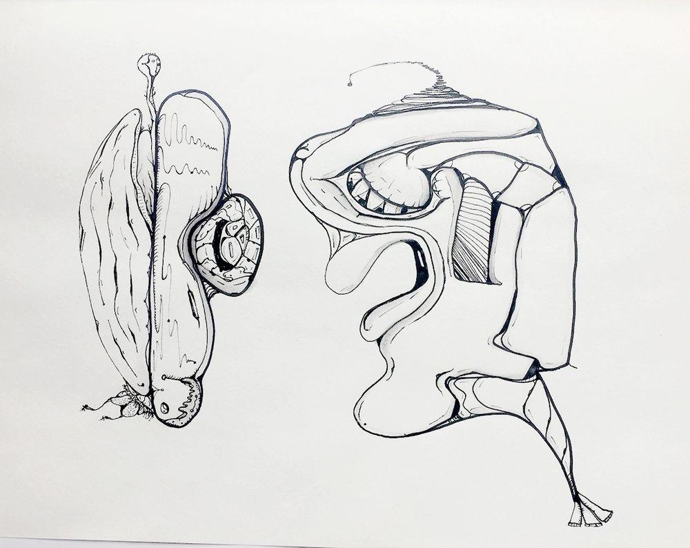 Sketch-49.jpg