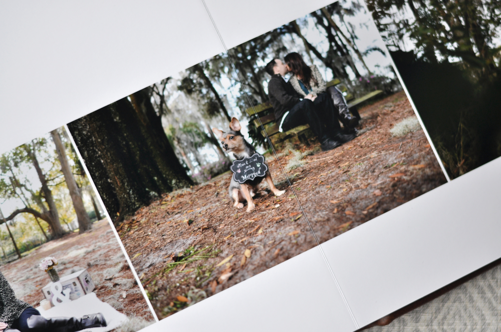 AlbumSample18.jpg