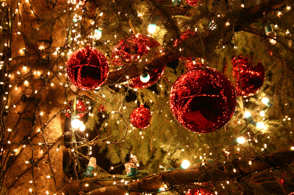 christmas-lights-photography-tumblr-ci6ppqjmm.jpg