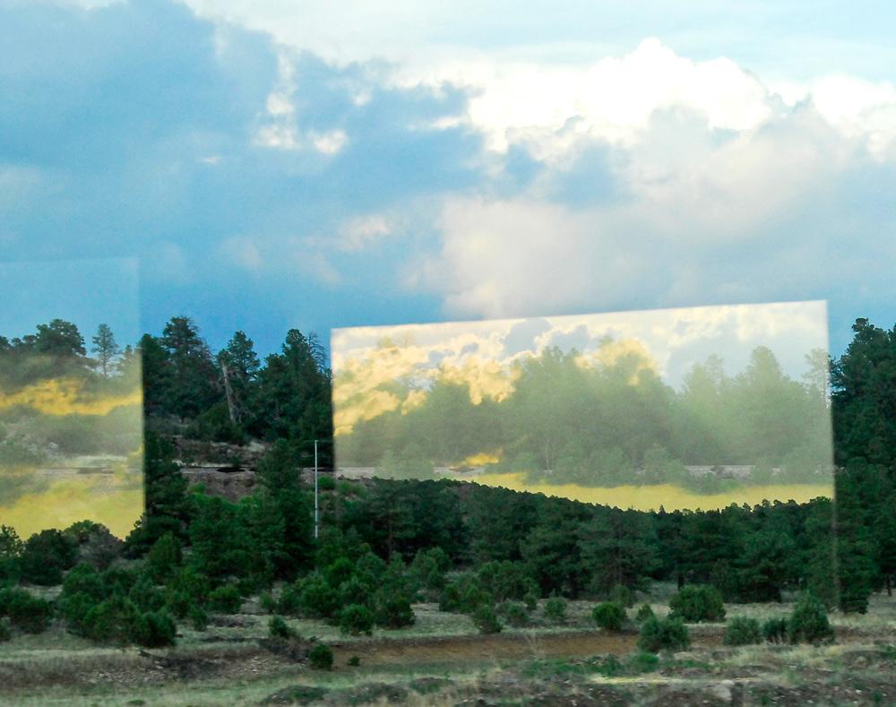 Train-Window-Reflection-Trees.jpg