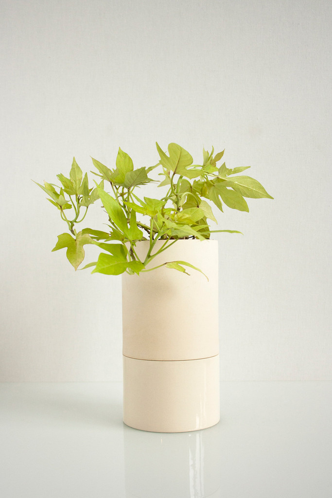 Chromo Self Watering Planter Tall from Light + Ladder