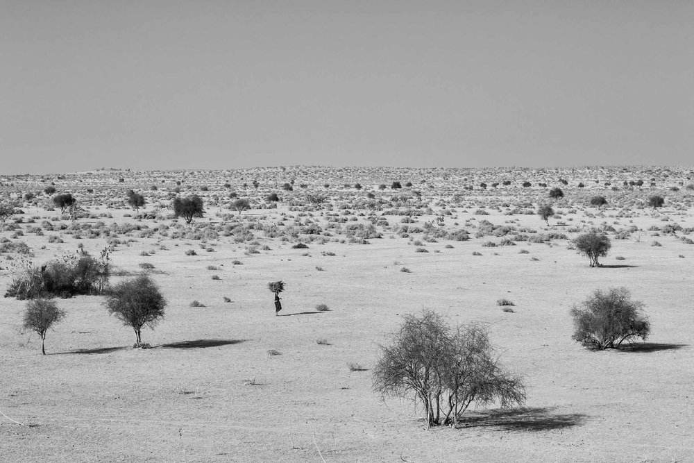 Photography from Jaisalmer India