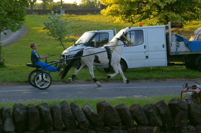 Travellers'Recreation_on_A686_-_geograph.org.uk_-_238092.jpg