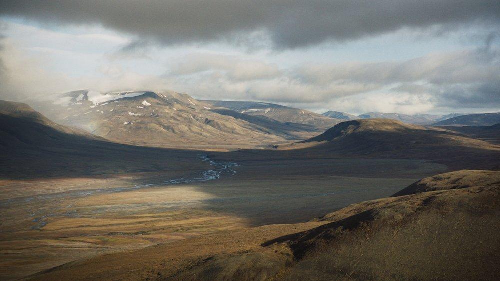 Wild_Relatives_(Svalbard).jpg