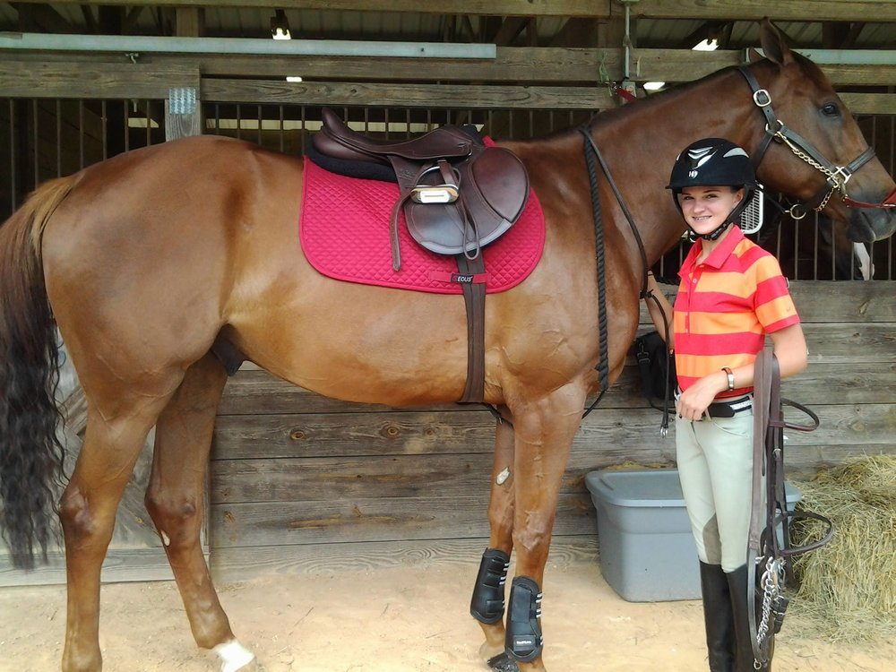 "Maranda Schill and Rocket Zone, an OTTB gelding originally rehabbed from the track by Race2Ring. ""Rocky"" was placed with Maranda in 2014 through Race2Ring's Love.Lease.Ride.Show program and now has a successful jumper career and lifetime home."