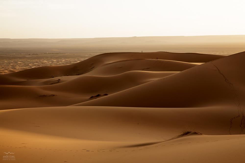 Puščavski razgledi.
