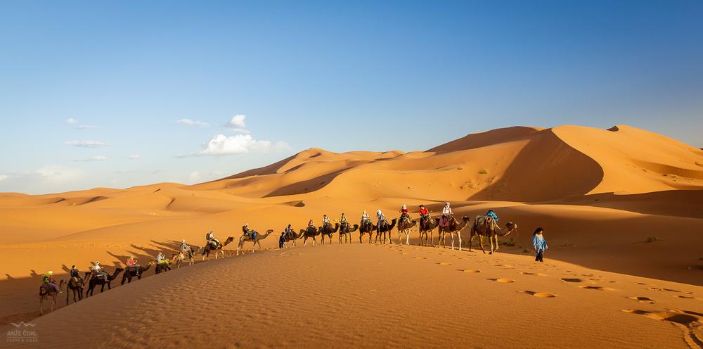 Osemnajstero članov Freeapproved na hrbtih enogrbih kamel (dromed) ob zahajajočem soncu jaha vse globlje v saharskopuščavo.