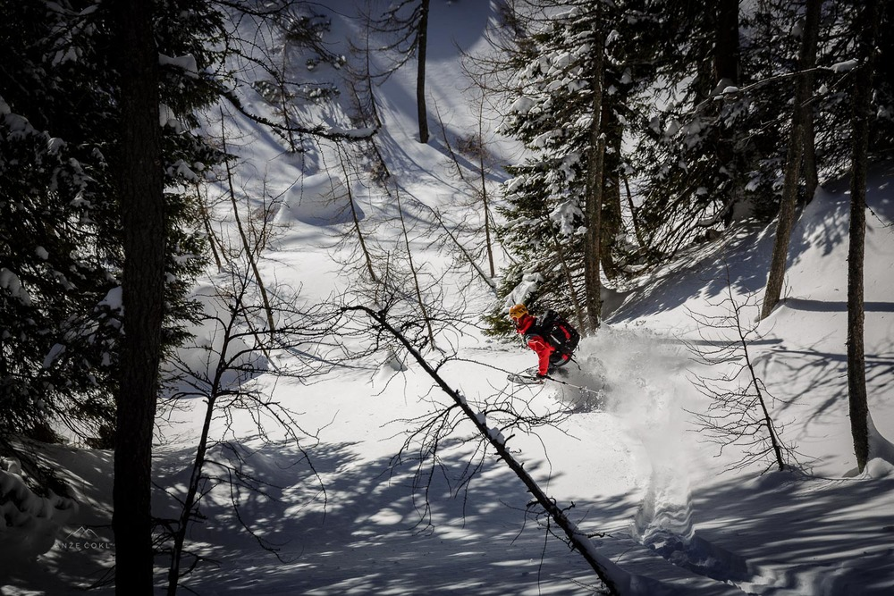 Zavoji  v gozdu po rahlem snegu.