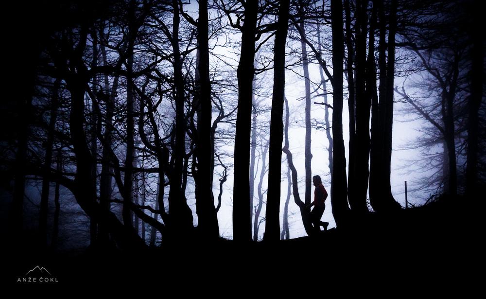 Hoja skozi temačen in vetroven gozd ob Avstrijski meji