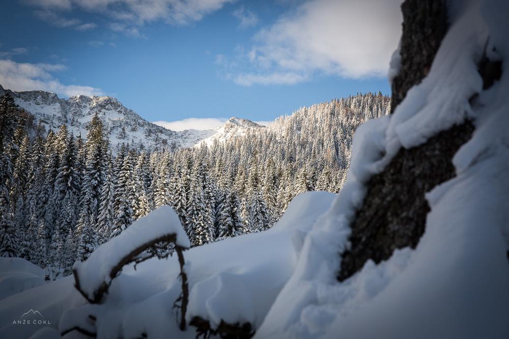 Pogled v osončene vrhove nad Blejsko kočo