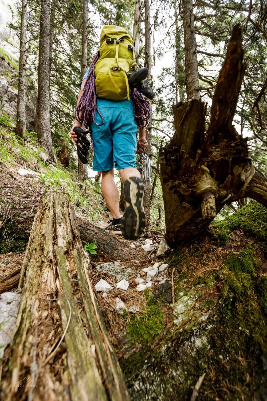 Kratek in sladek dostop skozi gozd.