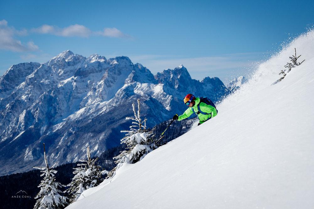 Smučanje v pršiču z Julijskimi Alpami v ozadju.