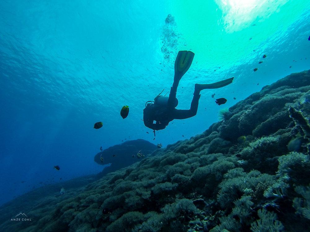 Svet pod vodo