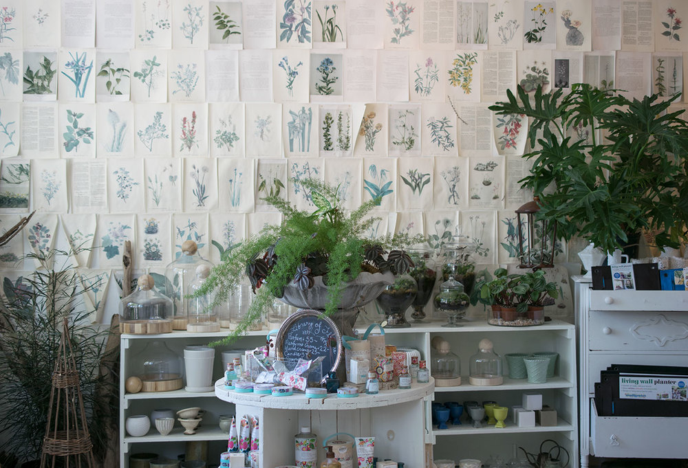 flora - vintage wallpaper