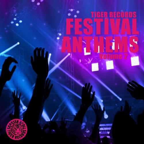 Festival Anthems (Vol. 2)