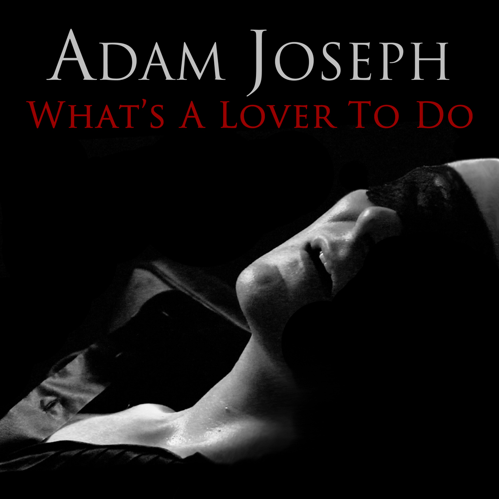 Adam Joseph - What's A Lover To Do