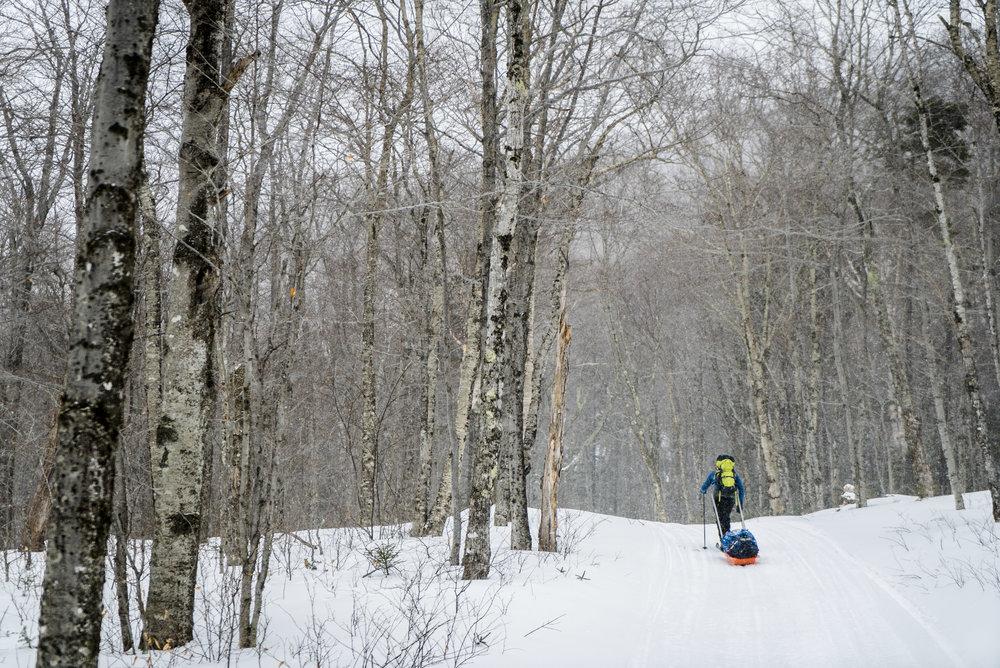 XC Skier-23.jpg