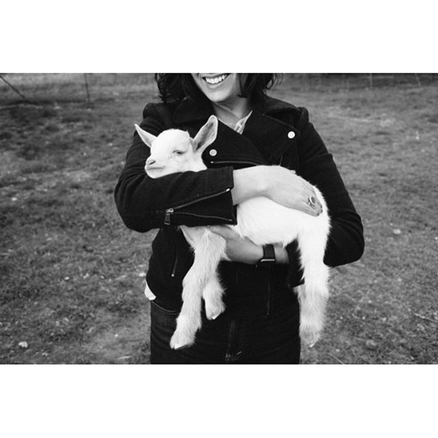 Baby goats! 🐐  @farmerpeppy your goats are so cute. . . . @alexisamenson @clairelowenthalartist @jesterkingbrewery  #goats #austinphotographer #portraitphotographer #lookslikefilm #leica #creativeportrait #portrait #atx #jesterking #atxphotography #untoldvisual #portrait_society #atxphotographer #lenscultureportait #portrait_vision #texasphotographer #portraitphotography #portraitperfection #unposed #hartcollective