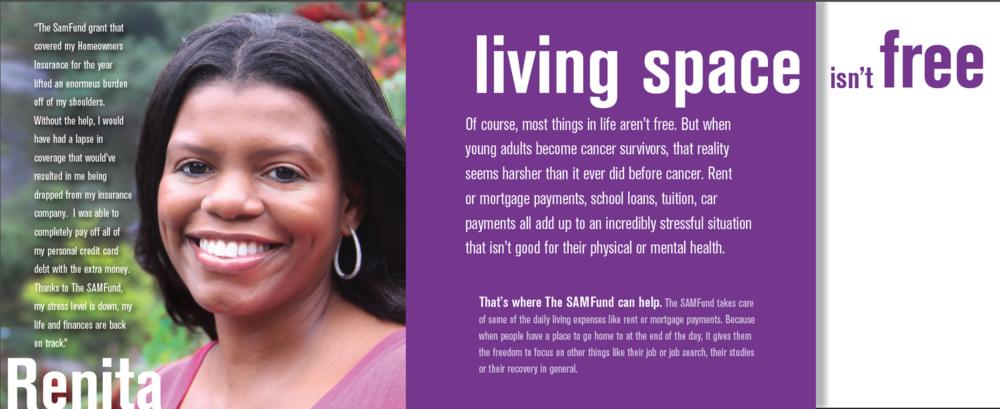SAMFund Promotional Brochure