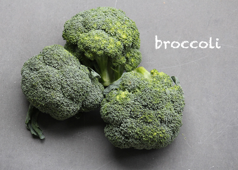 SFC_broccoli_labeled.jpg