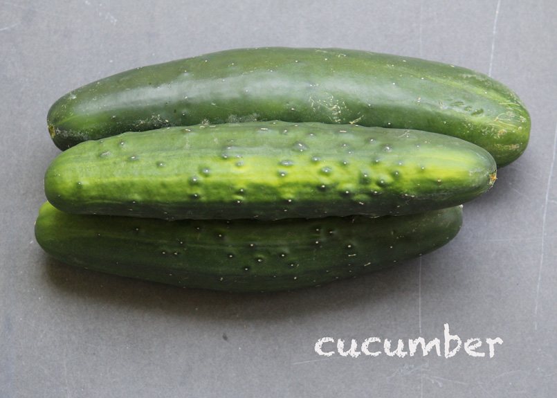 SFC_cucumber_labeled.jpg