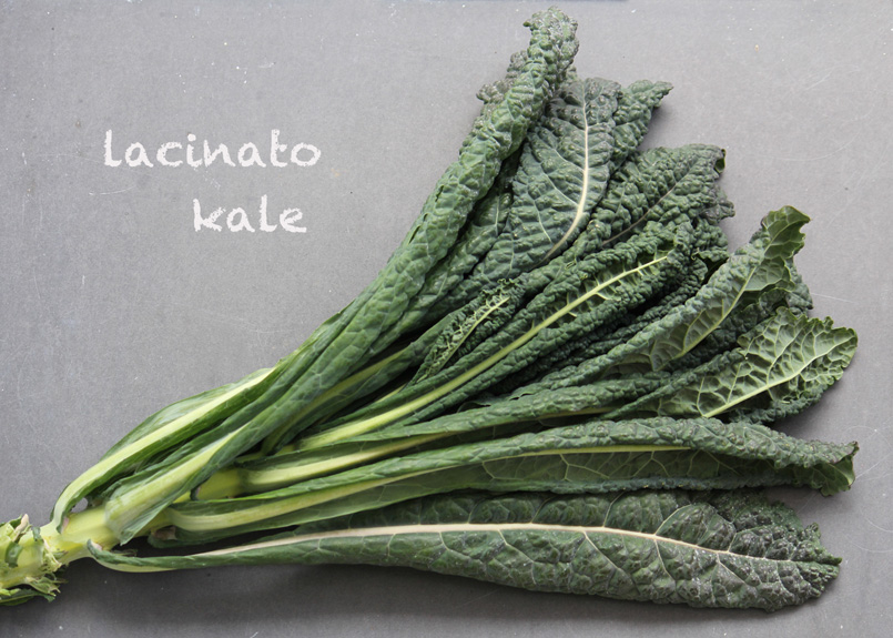 SFC_kale_lacinato_labeled.jpg