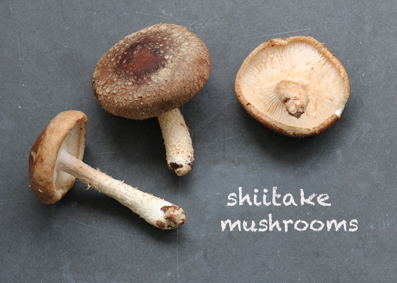 SFC_mushrooms_shiitake_labeled.jpg