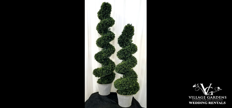 Spiral Topiary Tree