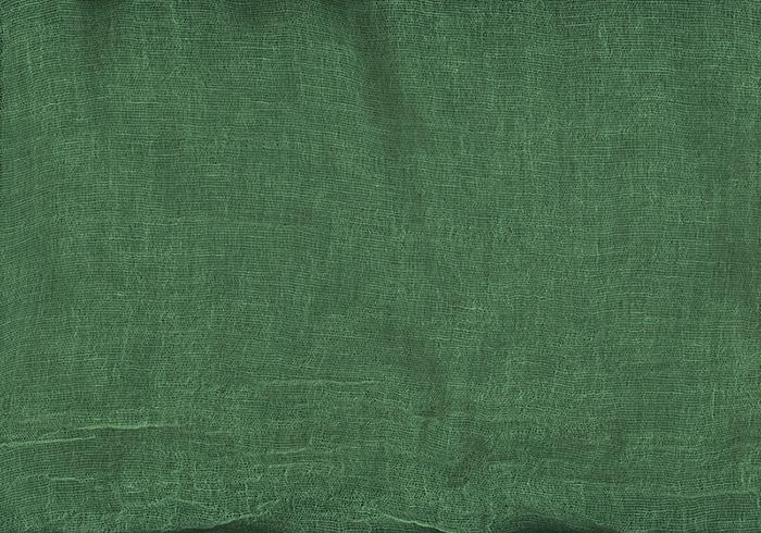 "green inkjet print,20 x 28.5""2008"