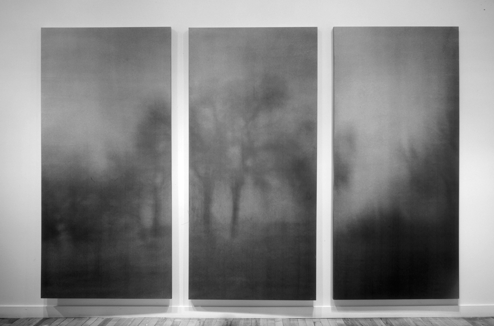 "Yancey Richardson Gallery, New York  photosensitized linen prints, 84 x 36"" each, 1989"