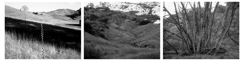 Malibu Canyon 2002