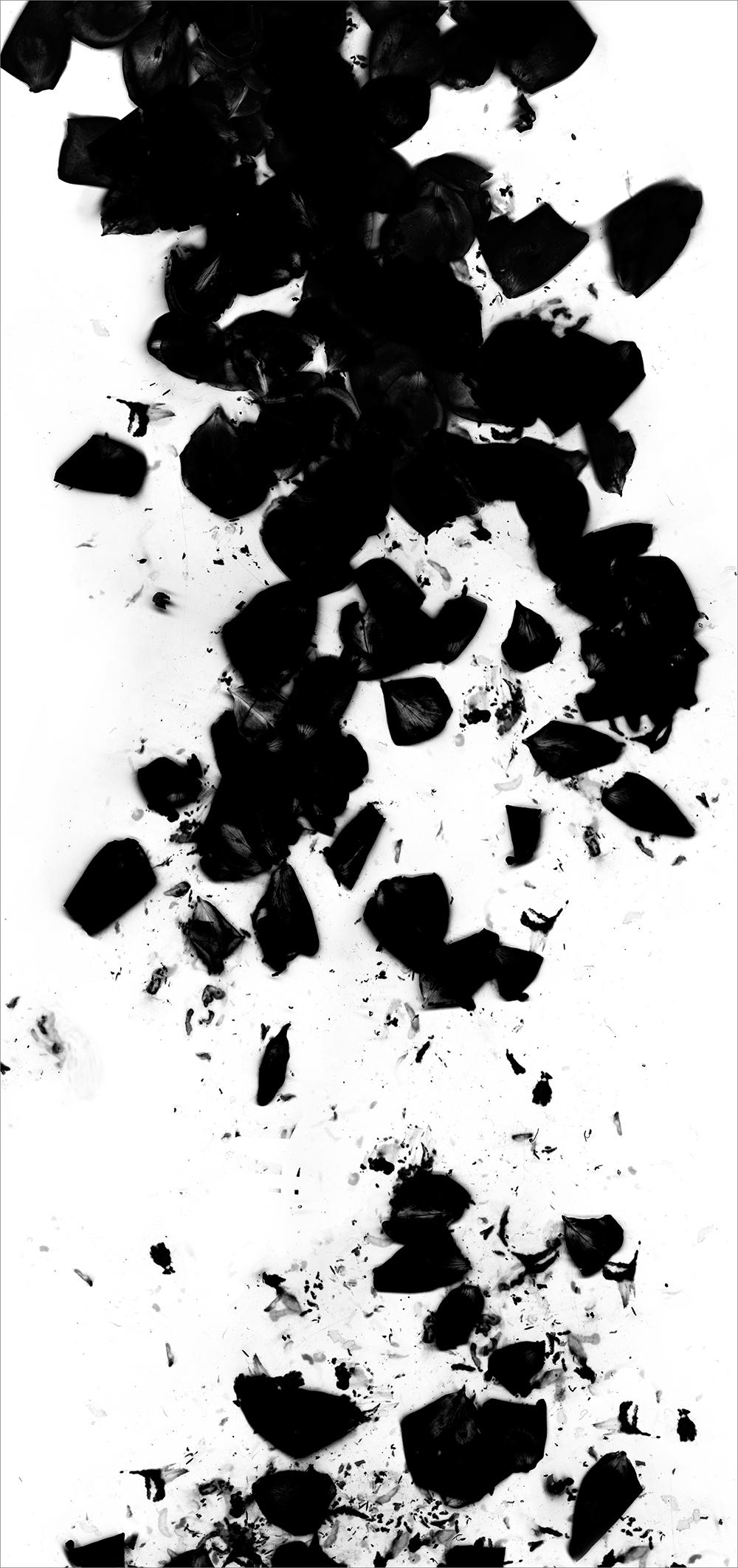 "#  4   inkjet print  , 90 x 44""  2009"