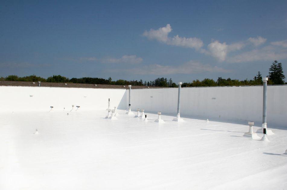 white roof.JPG
