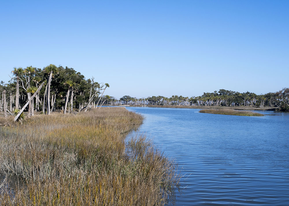 Marsh_Cuts_River.jpg
