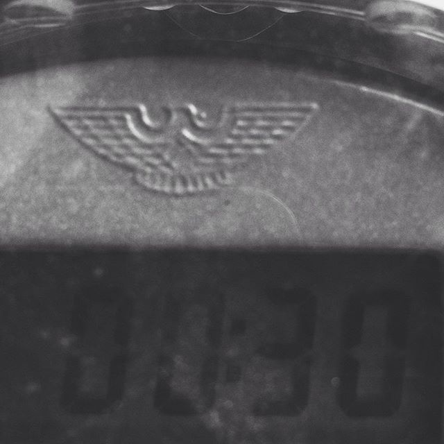 They say that the devil is in the details. Sometimes the devil is a perfect chubby eagle and the details are on a parking meter.