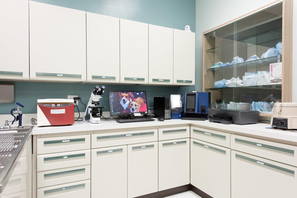 Laboratory 01.jpg
