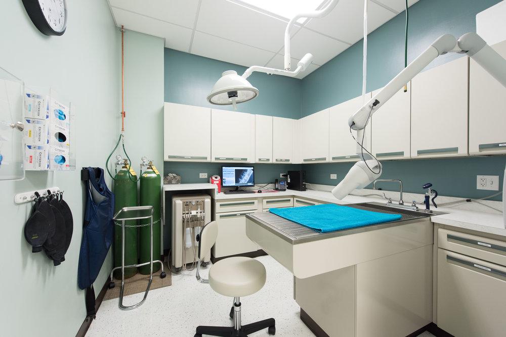 Dentistry Suite 01.jpg