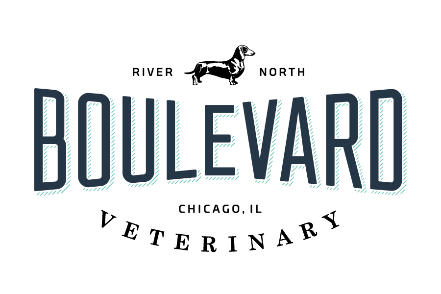 BLVD-VET_Logo_RiverNorth_FINALS-01.png
