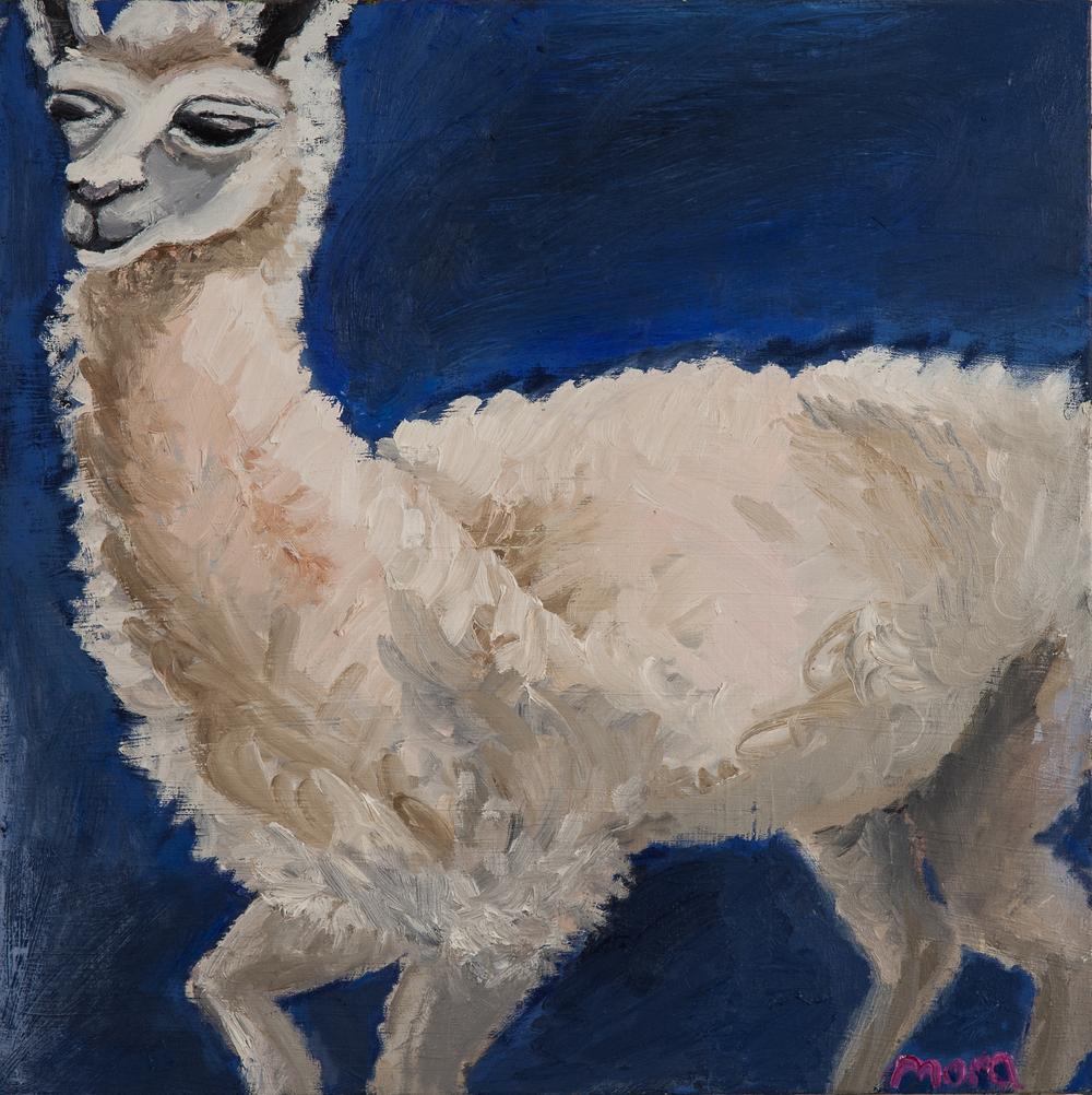 Animal Spirit ::: Llama