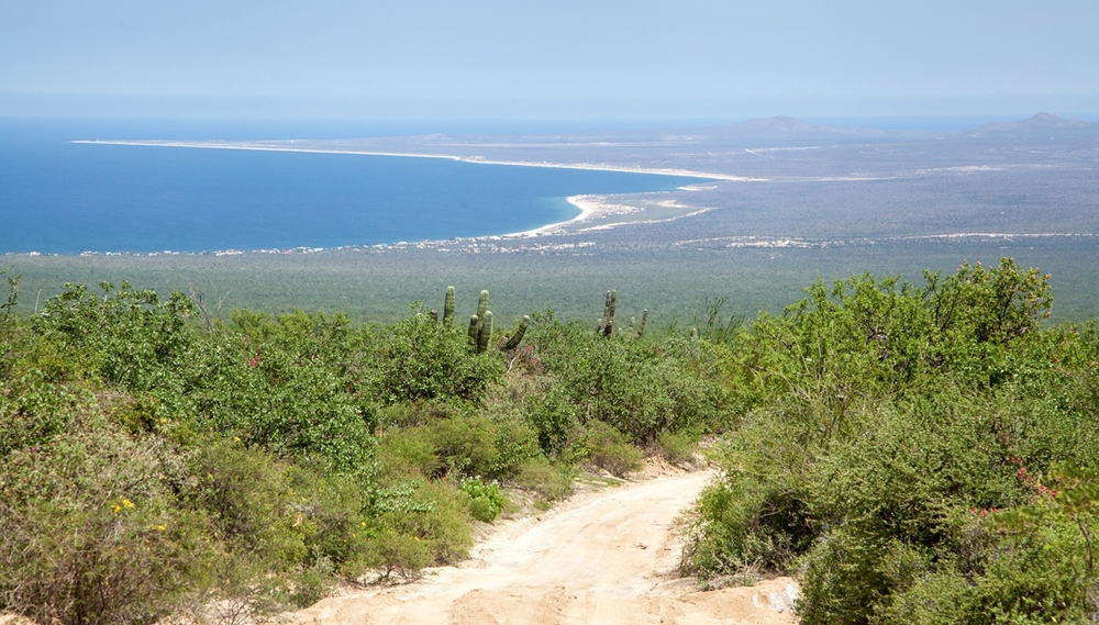 camino-acceso-rancho-chivato-la-paz-baja-sur.jpg