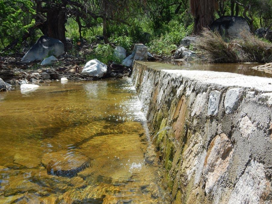 manejo-cuencas-represos-rancho-cacachilas-bcs.jpg