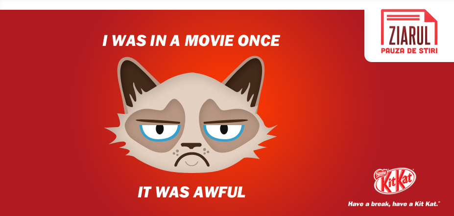 Grumpy Cat goes to Hollywood