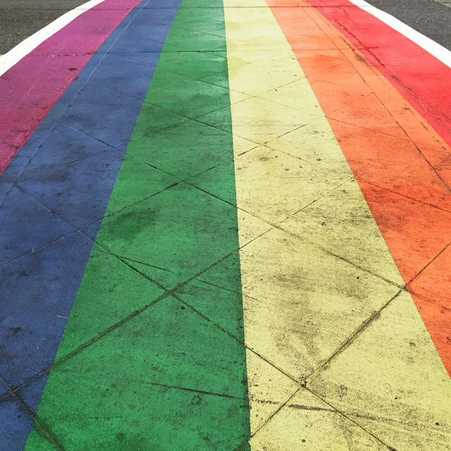 Follow the rainbow brick road #Seattle #caphill #walkabout