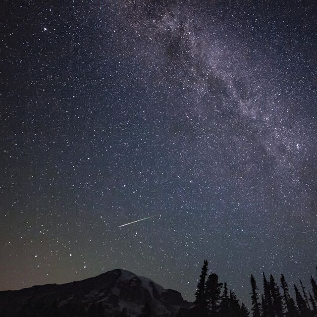 I caught this green tailed #Perseid sneaking up on Mount Rainier. Saw many more meteors and gazed at the Milky Way for hours. #astrophotography #shootingstar #mountain #meteorshower