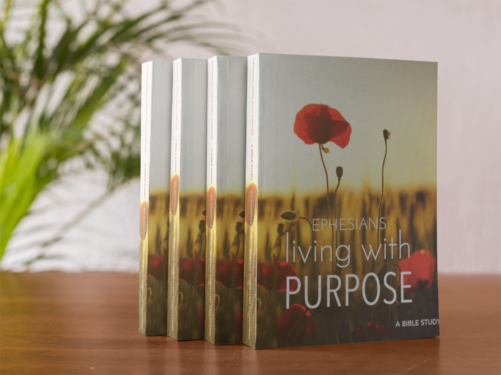 Living with Purpose | Ephesians - Join the One Foot Community of Christian women for this 9 week study on the book of Ephesians. We'll walk through Ephesians and study Paul's letter to the church in Ephesus and what that means for us today. We'll apply what we're learning each week with proven life coaching tools.
